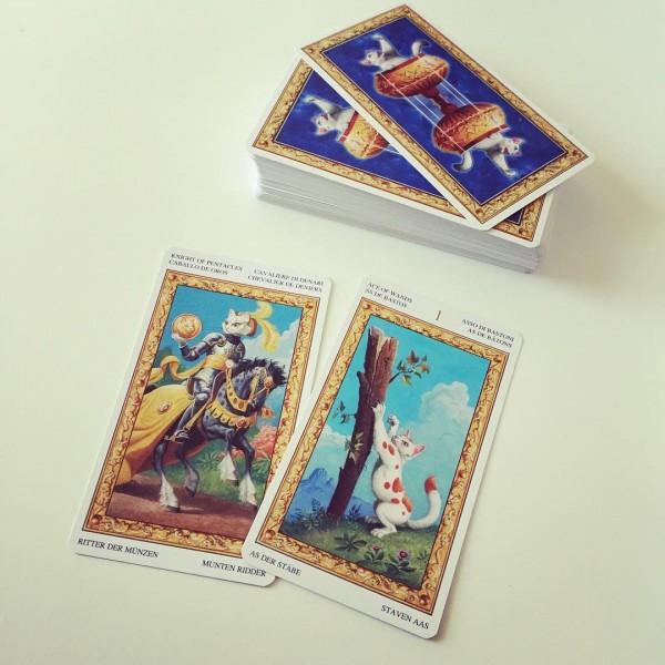 Tarot-of-White-Cats-2-600×600