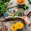 Herbcrafters+Tarot+Orange+Daisies