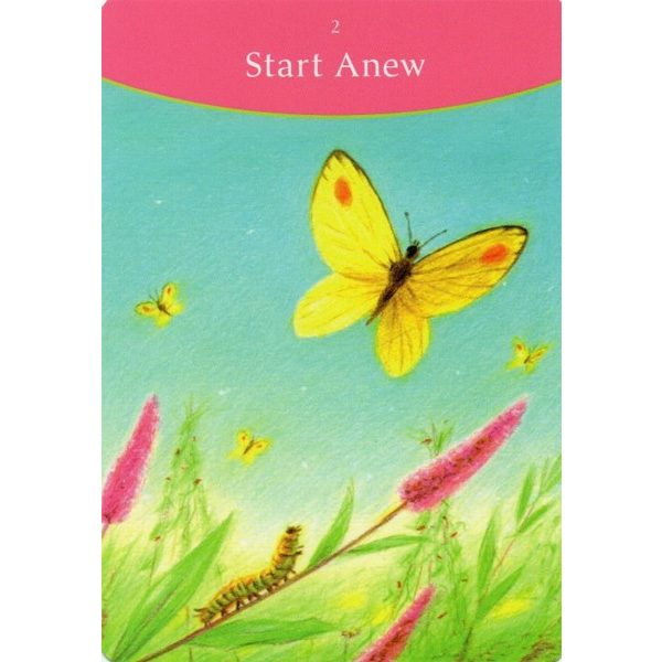 Answer-is-Simple-Oracle-Cards-7
