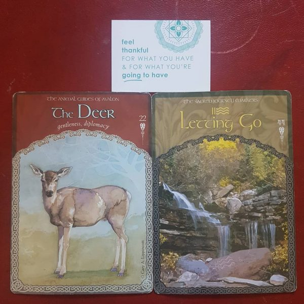 Wisdom-Of-Avalon-Oracle-Cards-3